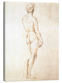 Toile  Study of David - Michelangelo