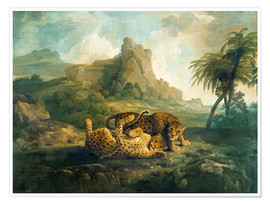 Poster  Leopards at Play - George Stubbs