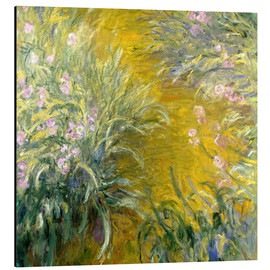 Tableau en aluminium  Le Chemin à travers les iris - Claude Monet