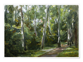 Poster Birch Grove in Wannsee