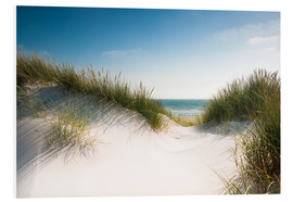 Tableau en PVC  Dune with shiny marram grass - Reiner Würz