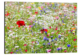 Tableau en aluminium  Colorful Meadow - Suzka