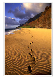 Poster  Foot Prints in Sand - Douglas Peebles