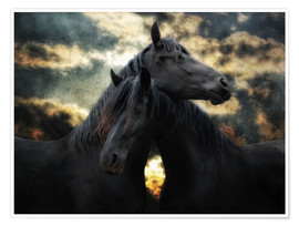 Poster Chevaux sauvages