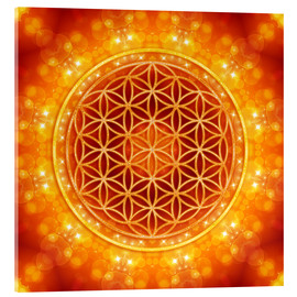 Verre acrylique  Flower of Life - Golden Age - Dolphins DreamDesign
