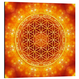Alu-Dibond  Flower of Life - Golden Age - Dolphins DreamDesign