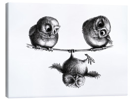 Toile  Three owls freedom and fun - Stefan Kahlhammer