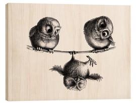Bois  Three owls freedom and fun - Stefan Kahlhammer