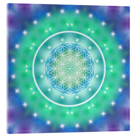 Tableau en verre acrylique  Flower of Life - Relaxation - Dolphins DreamDesign