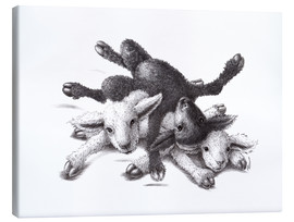 Toile  Three Sheep - Ball Of Wood - Stefan Kahlhammer