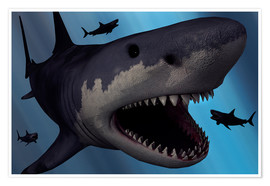 Poster  A Megalodon shark from the Cenozoic Era - Mark Stevenson