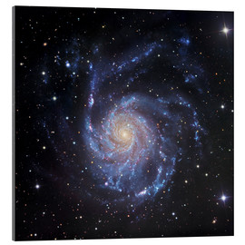 Tableau en verre acrylique  M101, The Pinwheel Galaxy in Ursa Major - Robert Gendler
