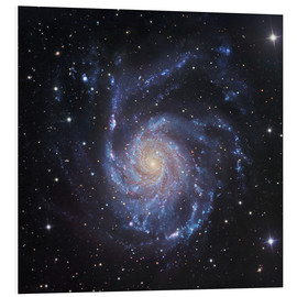 Tableau en PVC  M101, The Pinwheel Galaxy in Ursa Major - Robert Gendler