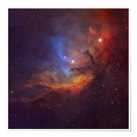 Poster  The Tulip Nebula in Cygnus - Robert Gendler