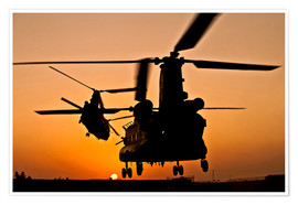 Poster  Two Royal Air Force CH-47 Chinooks