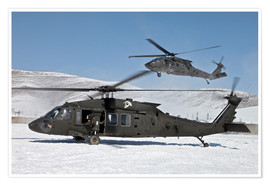 Poster  Two US Army UH-60 Black Hawk helicopter - Stocktrek Images