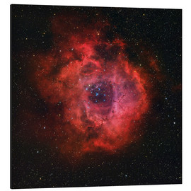 Tableau en aluminium  The Rosette Nebula - Rolf Geissinger