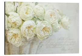 Alu-Dibond  Roses blanches - Lizzy Pe