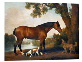 Tableau en verre acrylique  Horse and two dogs - George Stubbs