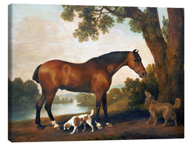 Toile  Horse and two dogs - George Stubbs
