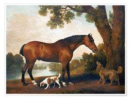 Poster  Horse and two dogs - George Stubbs