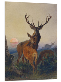 Tableau en PVC  A Stag with Deer at Sunset - Charles Jones