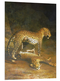Tableau en PVC  Two Leopards lying in the Exeter Exchange - Jacques Laurent Agasse