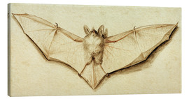 Tableau sur toile  Bat with spread wings - Hans Holbein d.J.