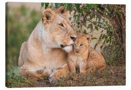 Tableau sur toile  Mother love at the lion - Ingo Gerlach