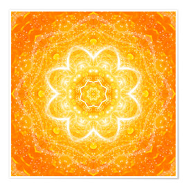 Dolphins DreamDesign - Mandala - The Blessing