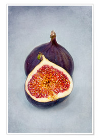 Poster  figues violettes II - Claudia Moeckel