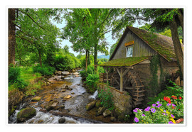 Poster  Mill in the black forest - Fine Art Images