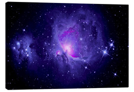Tableau sur toile  Orion Nebula M 42 and Running Man Nebula - MonarchC