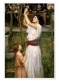 Poster  Cueillette de fleurs d'amande - John William Waterhouse