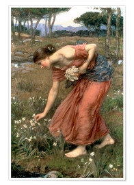 Poster  Narcisse - John William Waterhouse