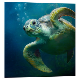 Verre acrylique  Bubbles, the cute sea turtle - Photoplace Creative
