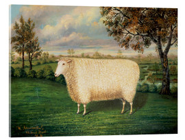 Verre acrylique  A Prize Sheep of the Old Lincoln Breed, 1835 - W. Adamson