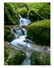 Poster  Little Waterfall in Black Forest - Andreas Wonisch