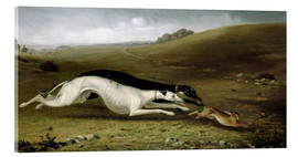 Verre acrylique  Hare Coursing in a Landscape, 1870 - John Fitz Marshall