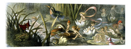 Tableau en verre acrylique  Water-Lilies and Water Fairies - Richard Doyle