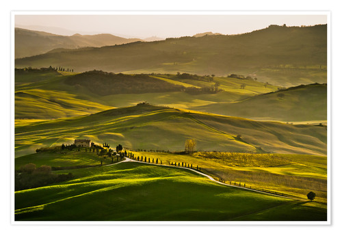 Poster Evening light in Tuscany
