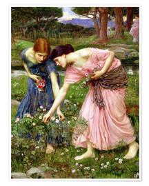 Poster  Rose cueillette en mai - John William Waterhouse