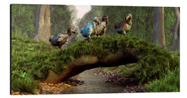 Tableau en aluminium  Dodos cross a stream - Daniel Eskridge