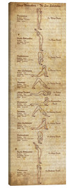 Toile  Surya Namaskara The Sun Salutation(vertical) Yoga Poster - Sharma Satyakam