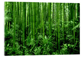 Verre acrylique  bamboo forest - GUGIGEI