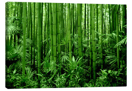 Tableau sur toile  bamboo forest - GUGIGEI