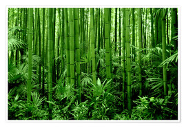Poster  bamboo forest - GUGIGEI