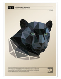 Poster fig6 Polygonpanther Poster
