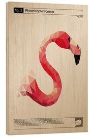 Tableau en bois  fig3 Polygonflamingo Poster - Labelizer