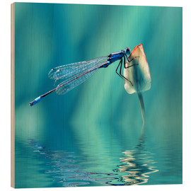 Tableau en bois  Dragonfly with Reflection - Atteloi